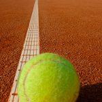 ATP 2019